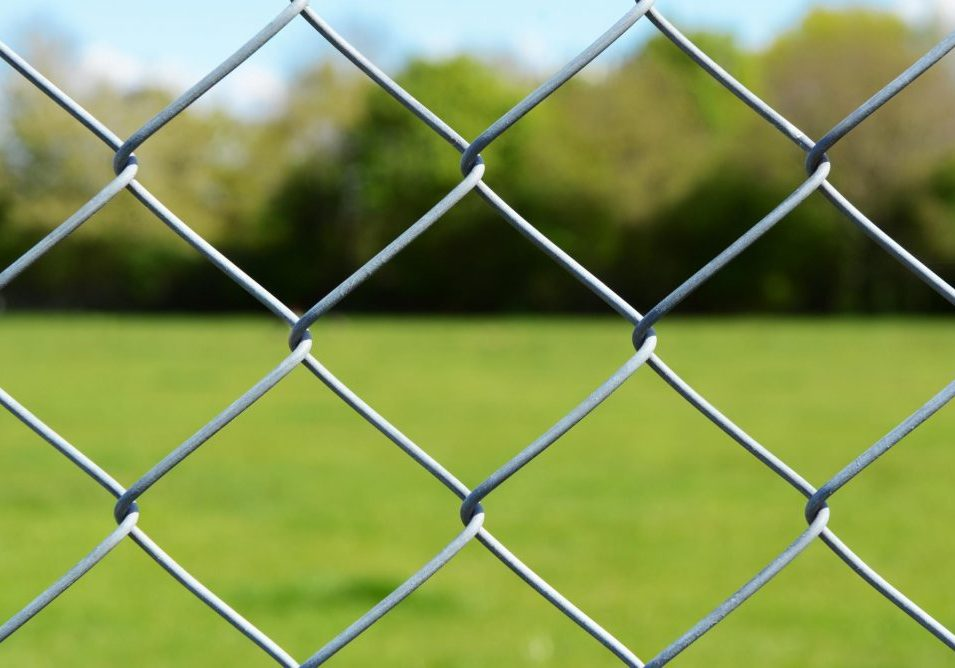 chain link in the field